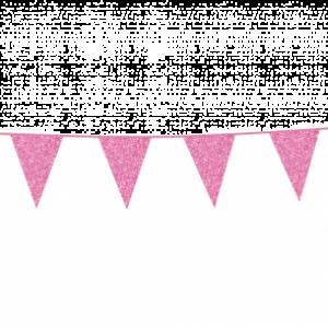 Vlaggenlijn Glitter Baby Roze