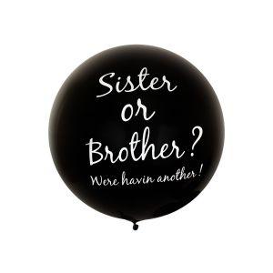 Reuze Ballon Sister or Brother 80 cm