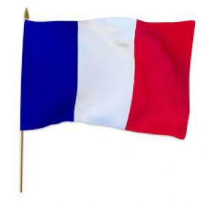Zwaaivlag Frankrijk XXL