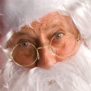 Sinterklaas/kerstman bril