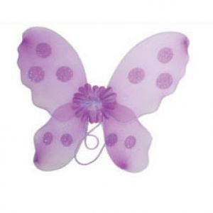 Vlinder vleugel Paars
