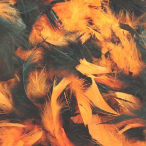 Boa Oranje/Zwart