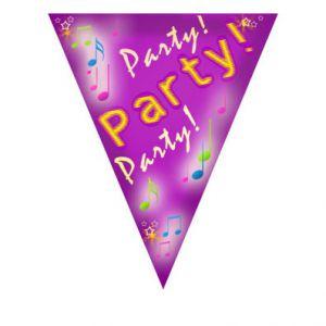 Vlaggenlijn 'Party' (5 m.)