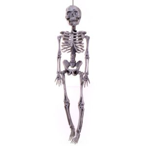 Skeletjes (15 cm 2 stuks)