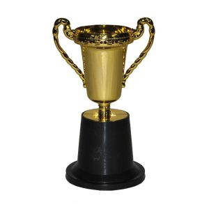 Trofee Beker 25 cm.